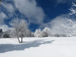 contrastes neige montagne givre